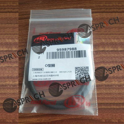 Ingersoll Rand 95987988 O-RING Original Spare Parts